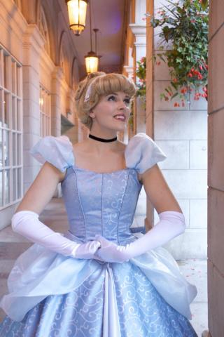 Cinder Princess